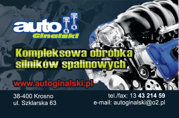 Firma Handlowo-Usługowa AUTO Jacek Ginalski