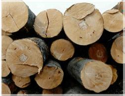 Zakład Stolarski Jacek Choma - producent nóg do stołów drewnianych, elementy toczone, fryzy, tarcica mokra, tarcica sucha,