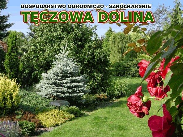 """Gospodarstwo Ogrodniczo-Szkółkarskie """"TĘCZOWA DOLINA"""" Szkółka drzew i krzewów ozdobnych"""